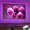 Картина с LED-подсветкой Кустовые розы