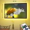 Картина с LED-подсветкой Ромашечка