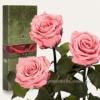 Три долгосвежие розы в коробке Florich Розовый кварц