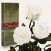 Три розы Florich Белый бриллиант