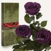 Три розы Florich Фиолетовый аметист