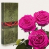 Три розы долгосвежие Малиновый родолит