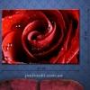 Картина на холсте (пигментная печать) Роза