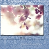Картина на холсте (пигментная печать) Сакура
