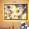 Картина с LED-подсветкой Ромашки