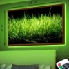 Картина с LED-подсветкой Зеленая трава