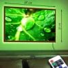 Картина с LED-подсветкой Зеленый лист