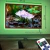 Картина с LED-подсветкой Крокусы