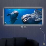 Картина-светильник Дельфинчики