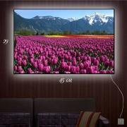 Картина-светильник Тюльпаны