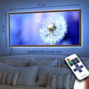 Картина с диодной подсветкой Одуванчик