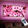 Картина с диодной подсветкой Розовые цветы