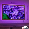 Картина с LED-подсветкой Сирень